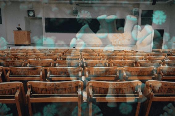 Escuela Primaria Online durante COVID-19